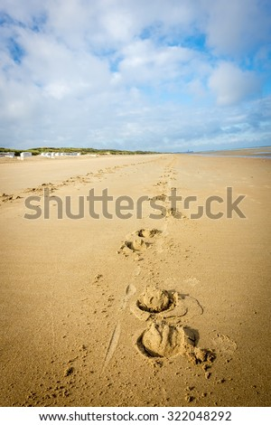 The footprint of a horse on the beach - stock photo