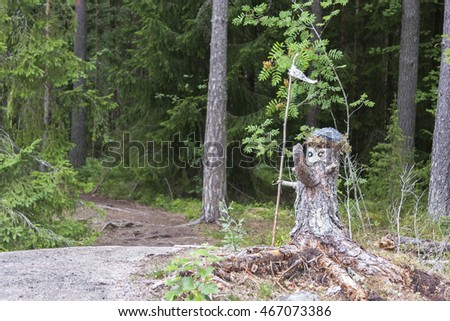 The forest of the old made of pine tree stump