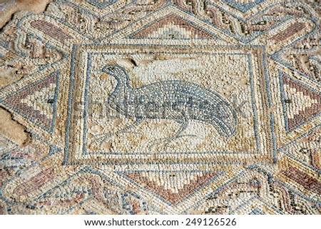 The fragment of ancient mosaic in Kourion, Cyprus - stock photo