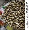 The fresh mushroom at the market shelf of groceries  shopping. - stock photo