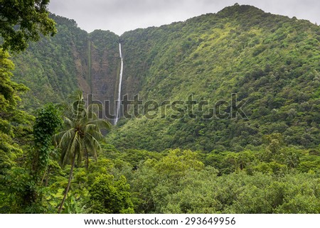The 1450 ft tall Hi'ilawe waterfall in the Waipio Valley. Big Island, Hawaii - stock photo