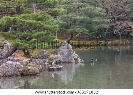 The garden and pond of Kinkakuji Temple (The Golden Pavilion) in Kyoto, Japan - stock photo