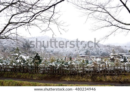 The garden in Oshino Hakkai Village in winter  with snow- covering landscape.