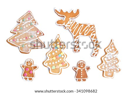 The gingerbread cookies isolated on white background - stock photo