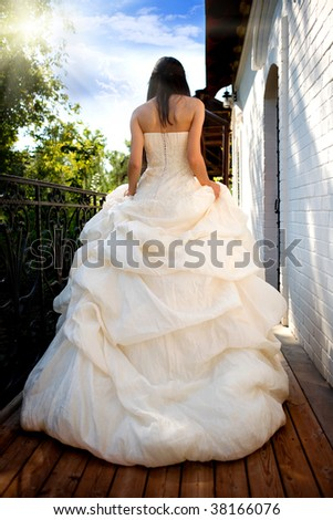 The girl in a ball dress. The rear view - stock photo