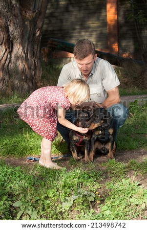 The girl in a summer dress feeds two dogs terriers under supervision of the father in a light shirt - stock photo