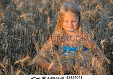 The girl in filed wheats. Warm light sunset - stock photo