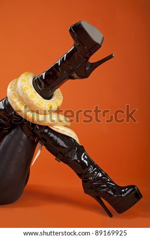 The girl in latex with a python - stock photo