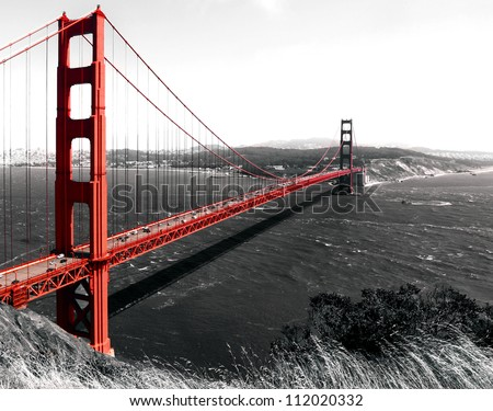 The Golden Gate Bridge on a monochromatic background.