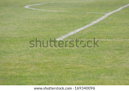 The grass on the field - stock photo