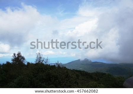 The green forest with the mountain in the background with fog.Soft focus.