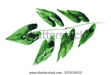The green leaf isolated on white. Watercolor. - stock photo