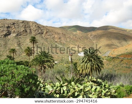 The green valley of Vega de Rio Palmas on the Canary Island Fuerteventura. This Island belongs to Spain - stock photo