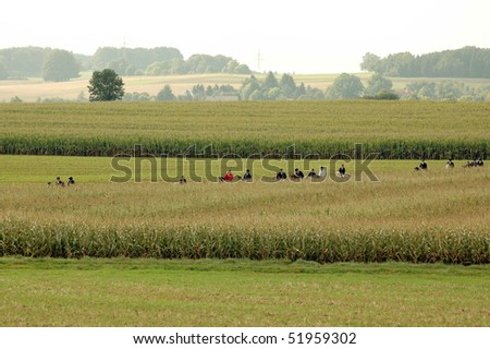 The group of equestrians ride through the field. - stock photo