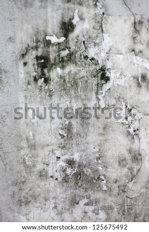 The Grunge cracked concrete wall for design - stock photo