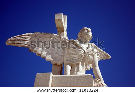 The guardian in graveyard - stock photo