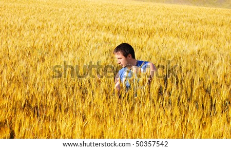 The guy examines wheat ears in an autumn field - stock photo