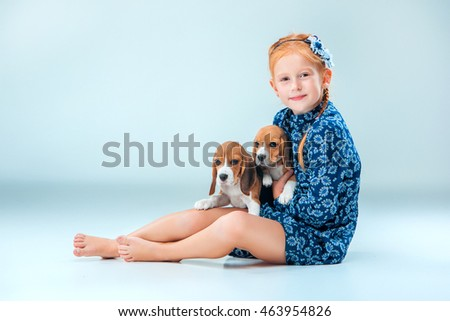 The happy girl and two beagle puppie on gray background