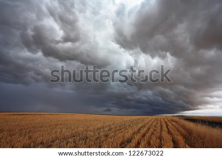 The harvest in the fields of Montana. The massive storm cloud covered the sky