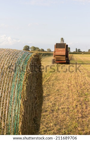 The harvest of hay to get to the milk production