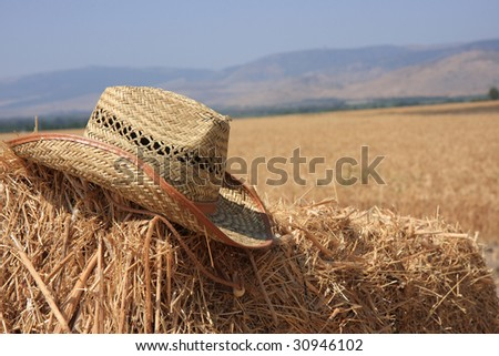 The hat - stock photo