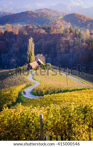 The Heart of Slovenia, a natural heart form, shaped by the landscape and following down the hill a heart appears in the midst of vineyards