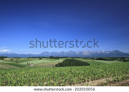 The Hill And The Top Of A Mountain - stock photo