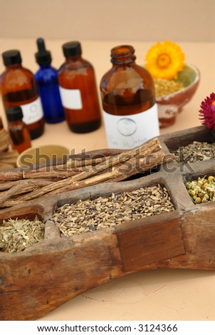 The holistic ingredients of Ayurveda and Herbalism including licorice root, milk thistle seeds, valerian root, chamomile, and tincture bottles. - stock photo