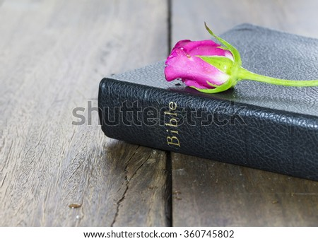 The holy bible with pink rose on wooden background - stock photo