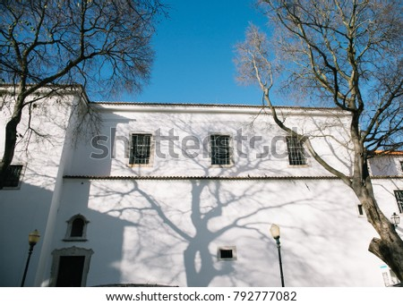 The house in Lisbon with tree shadow