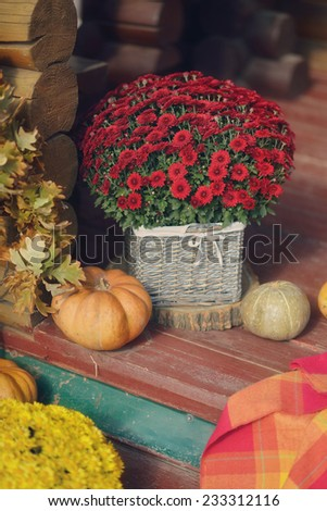 the house on a wooden table and a large pumpkin decorative vase with a bouquet of chrysanthemums - stock photo