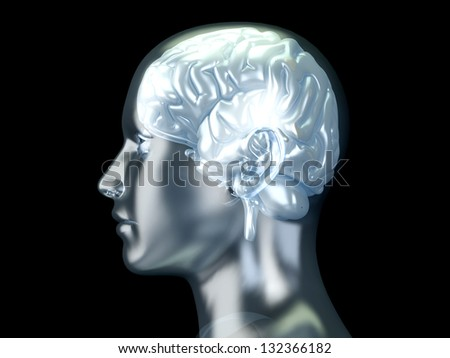 The Human Brain. 3D rendered anatomical illustration. - stock photo