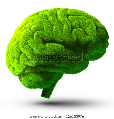 The human brain is covered with green grass. The metaphor of the wild, natural or imperfect intelligence. Isolated on white background with shadow - stock photo