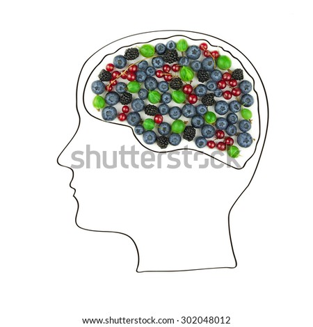 the human brain is laid out from the berries, healthy lifestyle. - stock photo
