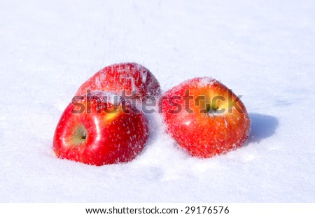 The image of apples on snow during a snowfall - stock photo