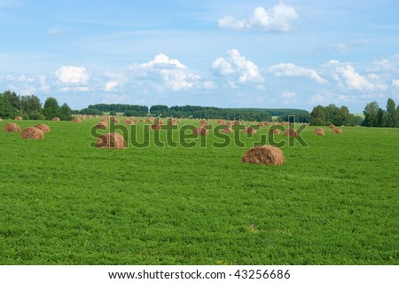 The image of oblique fields with straw bales - stock photo