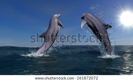 The image of two dolphins