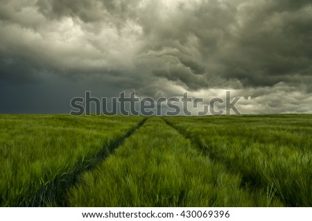 The image shows dark rainclouds over a field (barley) and was taken a few minutes after a small tornado. I'm not sure, but I think you can see the rest of the tornado. - stock photo