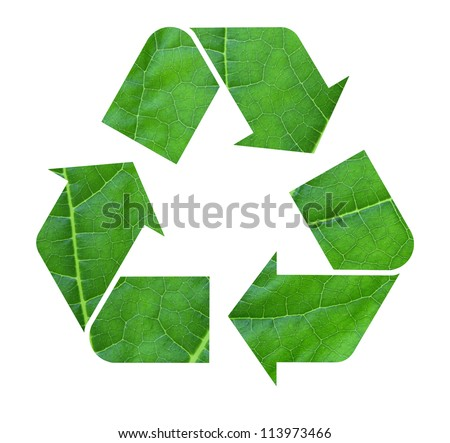 The international Recycle symbol with leaf texture, isolated on white background - stock photo
