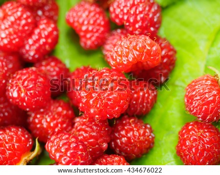 The juicy raspberries,