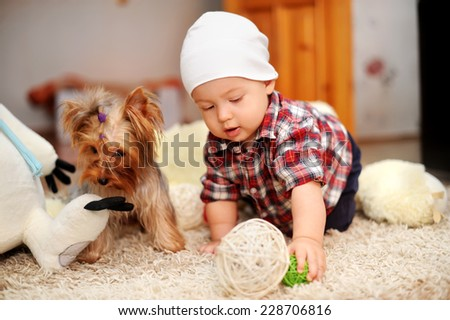 the kid and dog play in a nursery - stock photo