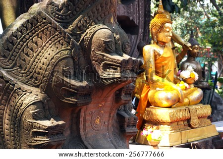 The king of serpent in the myth , buddha protections.   - stock photo