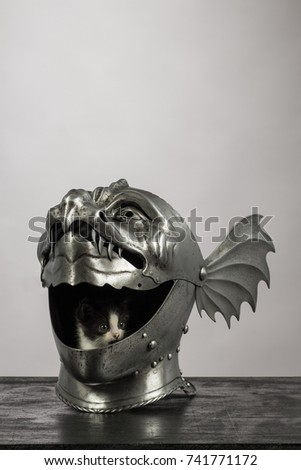 The kitten plays in the medieval knight's helmet Armet, in the form of dragon's muzzle, on a gray background