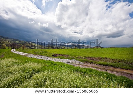 The landscape - stock photo