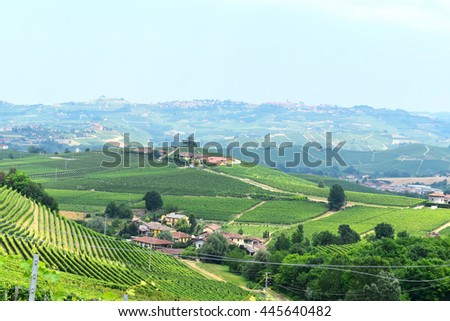 The Langhe landscape, Italy.