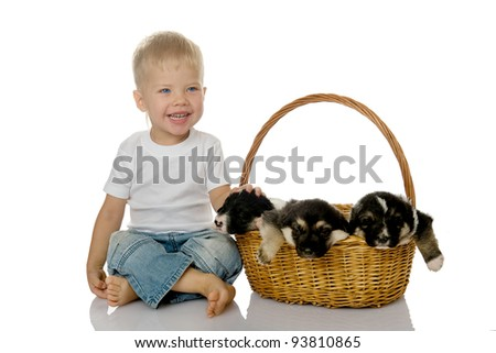 The laughing child with a basket of puppies. isolated on white background - stock photo