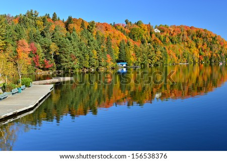 The Laurentian Forest in the fall, Sainte Marguerite du Lac Masson, Quebec, Canada - stock photo