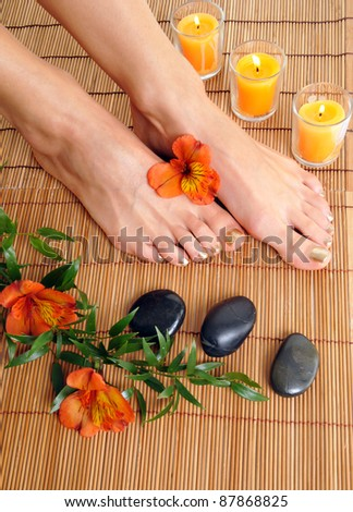 The legs on the SPA - stock photo