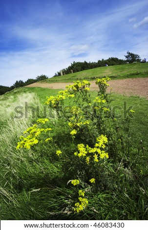 the licky hills country park with footpaths and trees in worcestershire, the midlands in the uk - stock photo