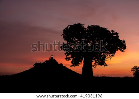 The lighthouse of Dakar and a baobab tree as seen at sunset.  - stock photo